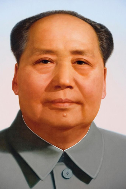 Laminated Chairman Mao Zedong Portrait China Chinese Sign Poster 12x18 Inch