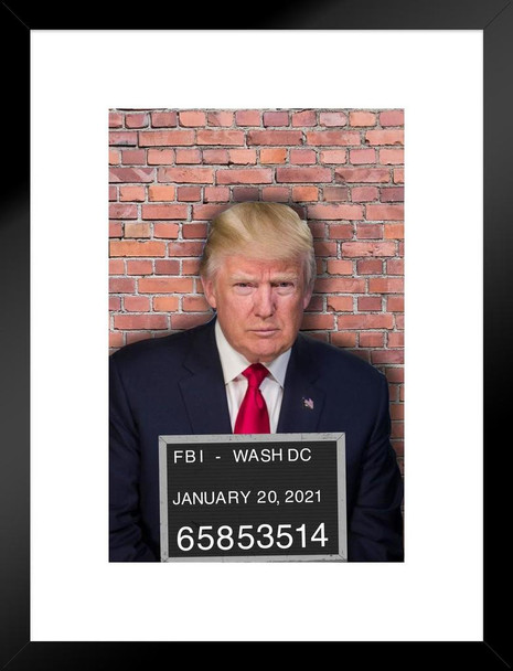 Donald Trump Mugshot Funny Political Matted Framed Wall Art Print 20x26 inch Inch