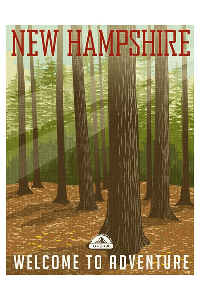 New Hampshire Forest Welcome To Adventure Retro Travel Mural Giant Poster 36x54 inch