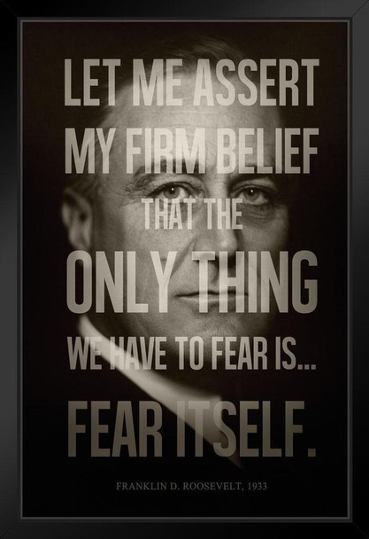 President Franklin D. Roosevelt Fear Itself Quote Modern Framed Poster 14x20 inch Inch
