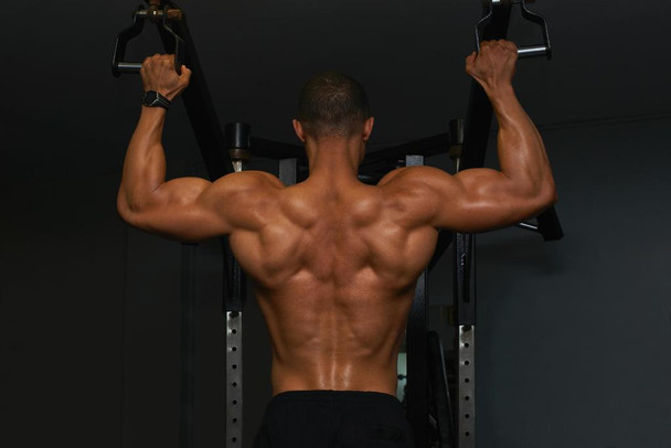 Body Builder Lifting Weights Rear View Photo Photograph Laminated Dry Erase Sign Poster 36x24