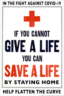 save-a-life-thumb.jpg