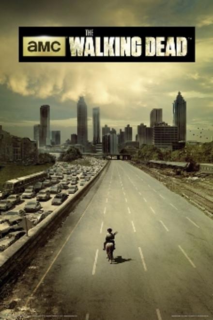 "54 The Walking Dead TV Series Show Season 31/""x24/"" Poster"