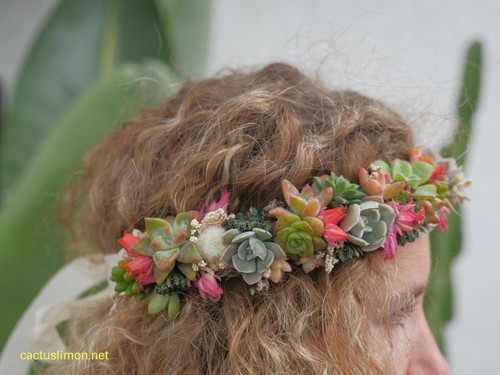 Succulent Design Studio Bohemian Succulent Head Band