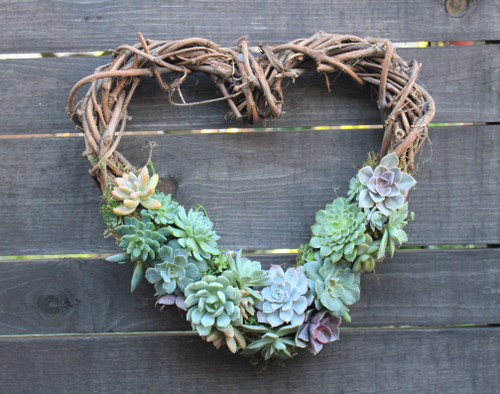 Luxury living succulent heart wreath