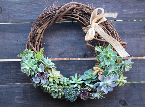 Luxury Succulent Wreath 15x15