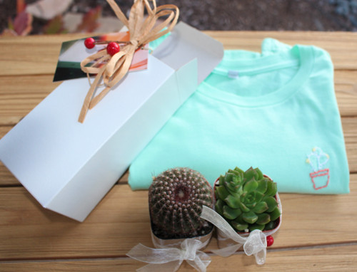 embroider t shirt plus 2 mini decorated cactus plants