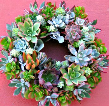 wreath-no-candle-b350.jpg