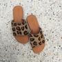 Hide Slide - Tan Snow Leopard