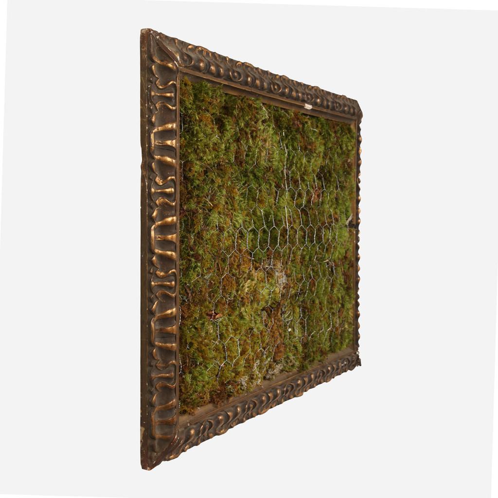 Moss Frame, 2