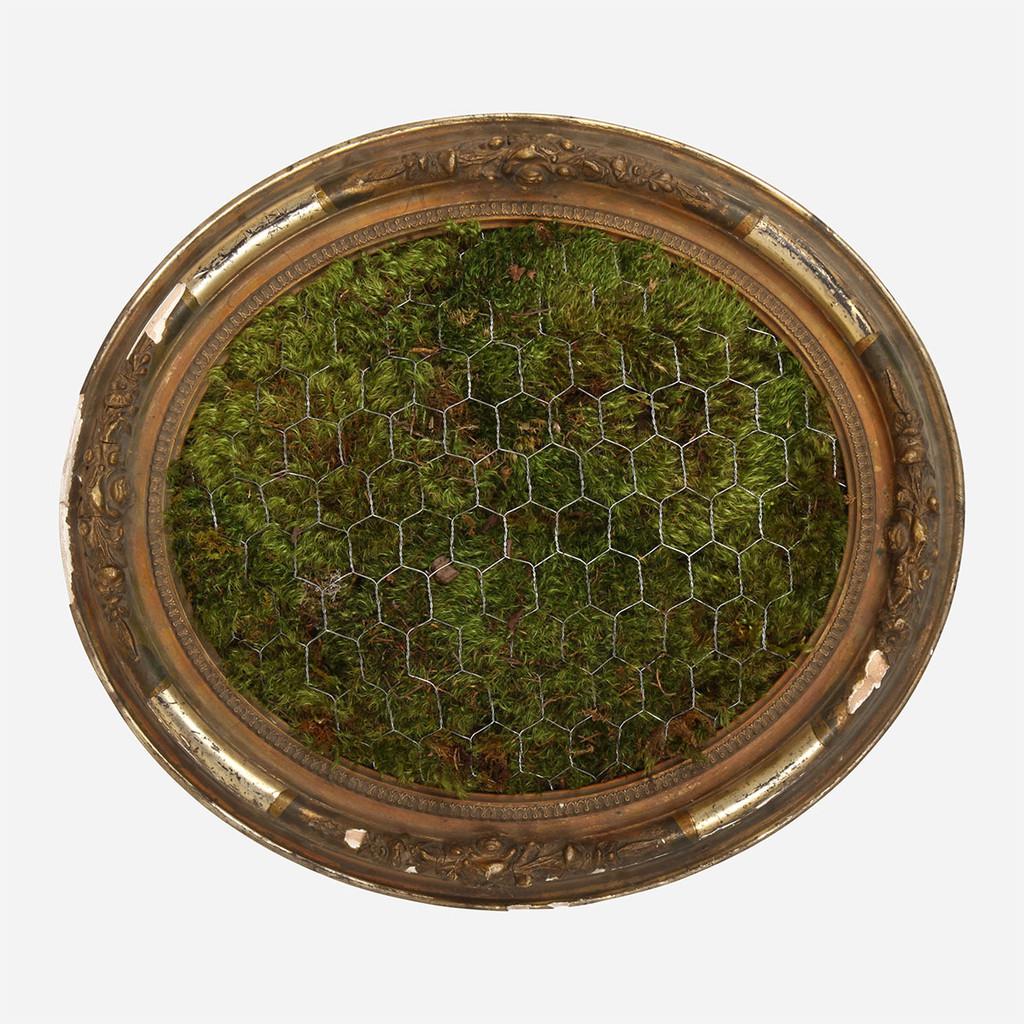 Moss Frame, 4