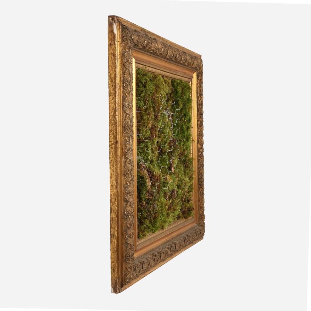 Moss Frame, 5