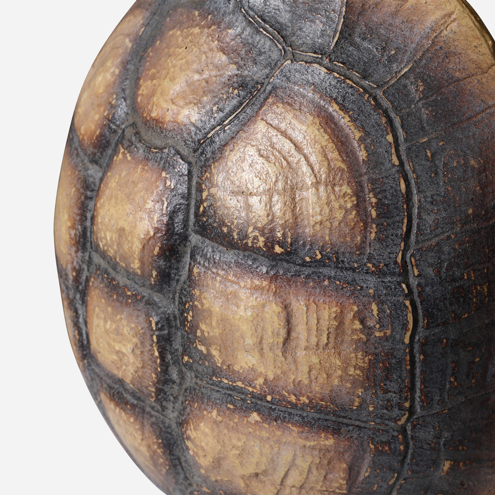 Faux Yellow-footed Tortoise Shell on Stand