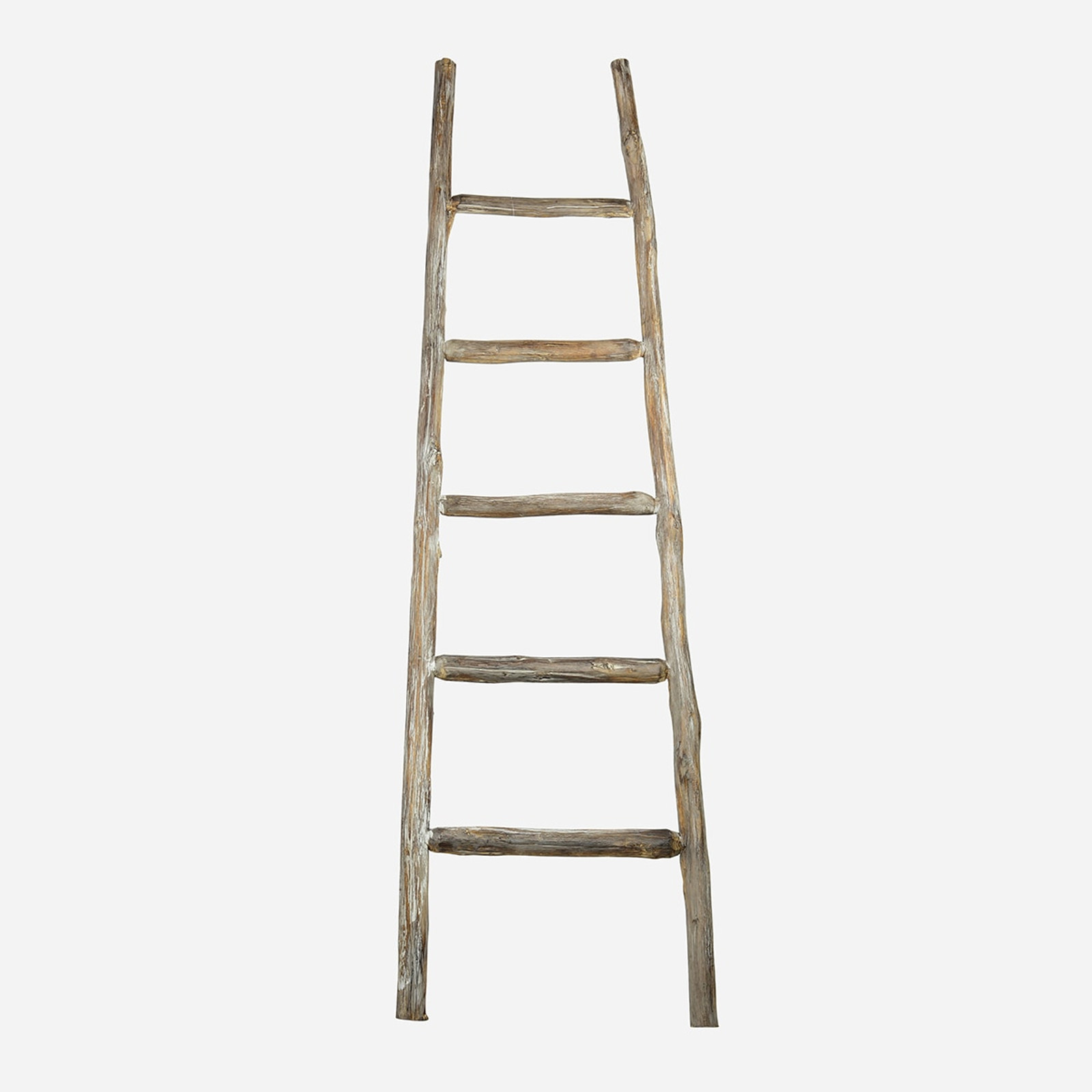 Primitive Display Ladder, Small