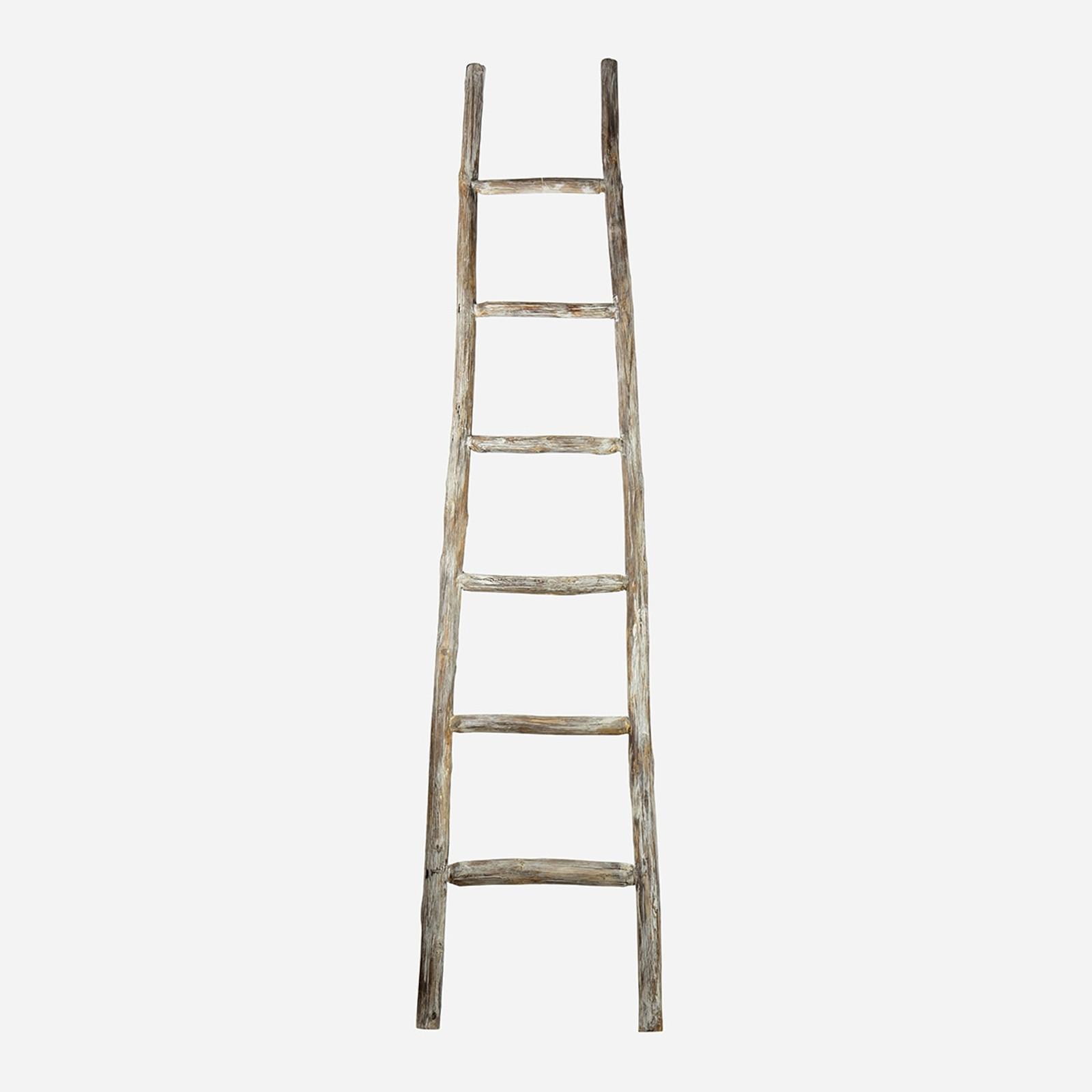 Primitive Display Ladder, Large