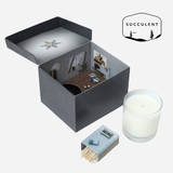 Succulent, Whiskey Candle