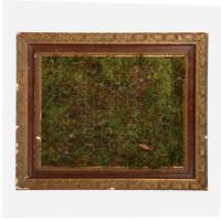 Moss Frame, 3