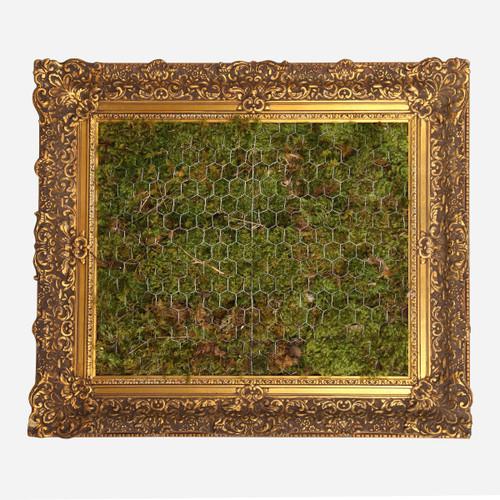 Moss Frame, 8