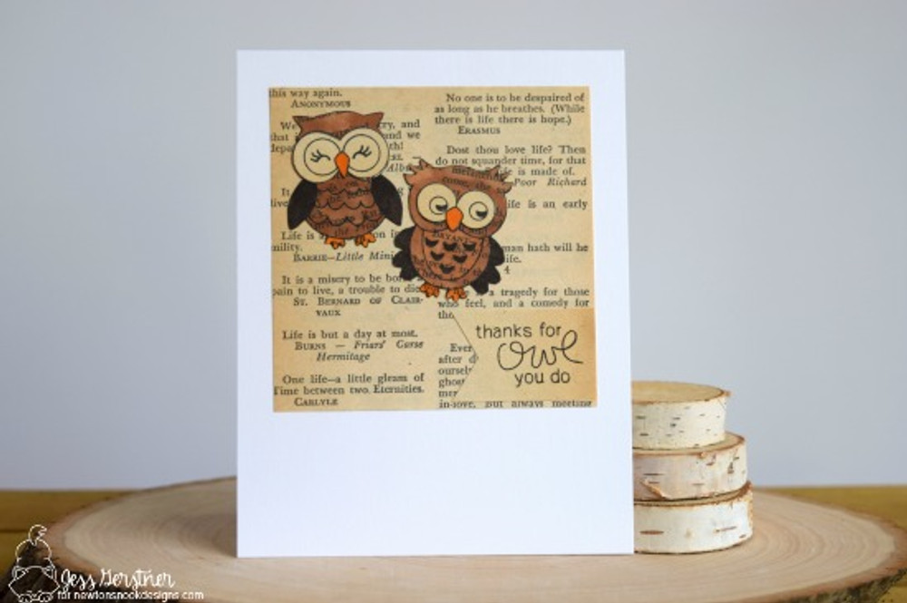 What a Hoot Stamp Set ©2016 Newton's Nook Designs