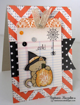 Halloween Cat and Pumpkin Card | Newton's Perfect Pumpkin Stamp Set ©2014 Newton's Nook Designs