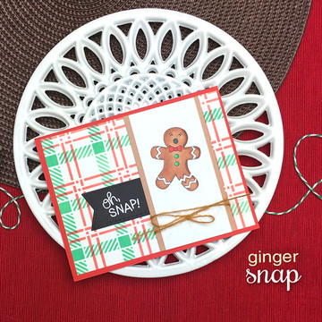 Ginger Snap Stamp Set ©2018 Newton's Nook Designs