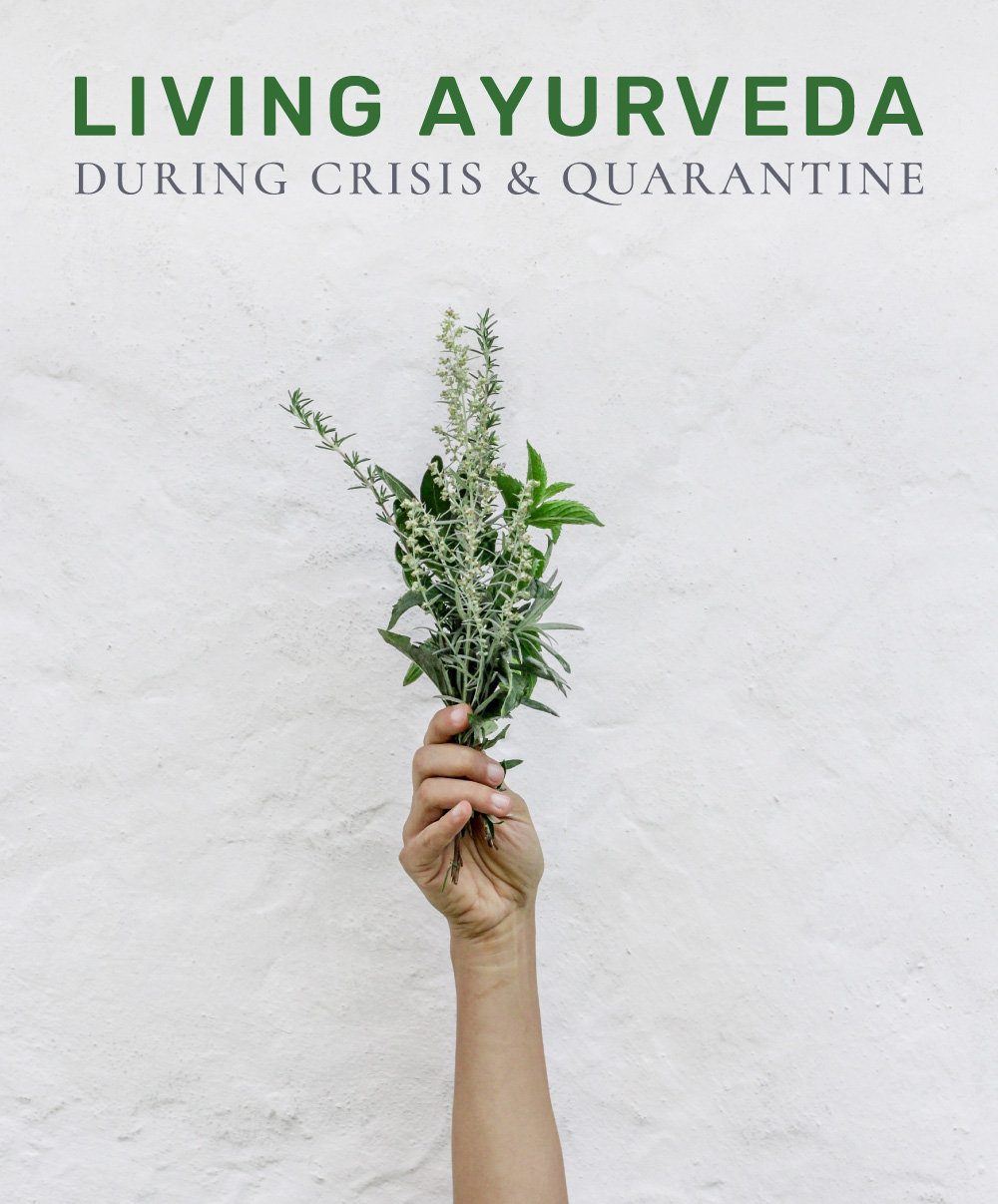 living-ayurveda-new-small.jpg