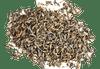 Premium Grade Organic Darjeeling Tea