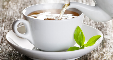 individual tea samples with free shipping