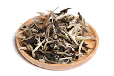 Is White Tea the New Miracle in Health and Beauty?