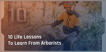10 Lessons You Can Learn From Arborists