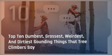 Top Ten Dumbest, Grossest, Weirdest, And Dirtiest Sounding Things That Tree Climbers Say
