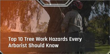 Top 10 Tree Work Hazards Every Arborist Should Know