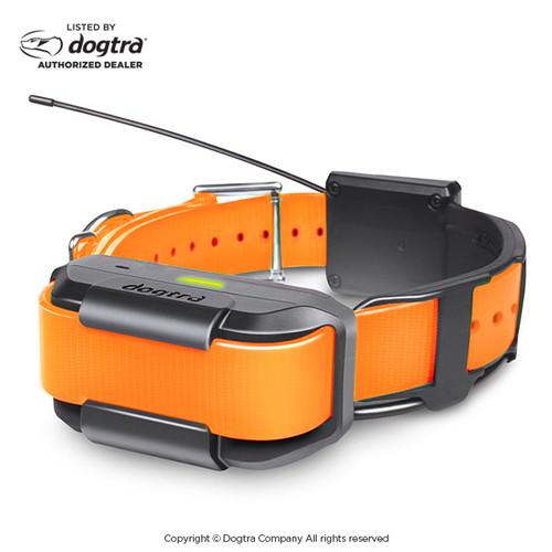 Dogtra Pathfinder Additional Receiver | GPS Training E-Collar