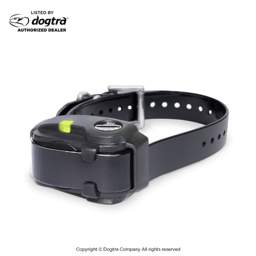 Dogtra YS200 | No Bark Collar | 1-Dog