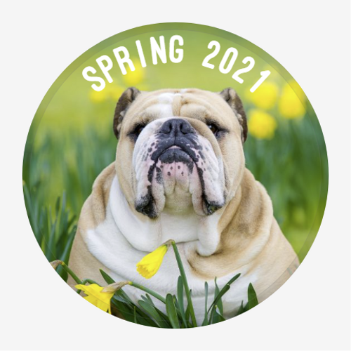 "Spring 2021 Personalized ""Cute As A Button""...Button"