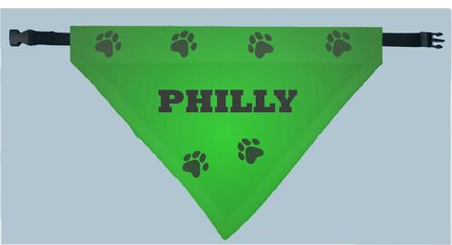 Personalized Pet Scarf -  Green Lantern Print
