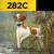 282C   Training E-Collar   2-Dog   Range: 1/2-mile   *Replaces 282NCP
