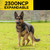 2300 NCP Expandable   Training E-Collar   Expandable up to 2-Dogs   Range: 3/4-mile