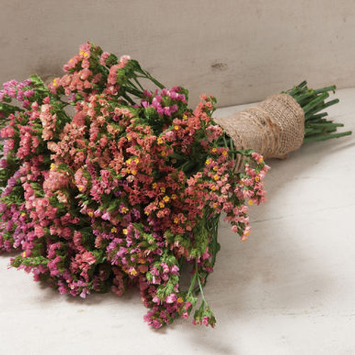 statice, dried flower, cut flower