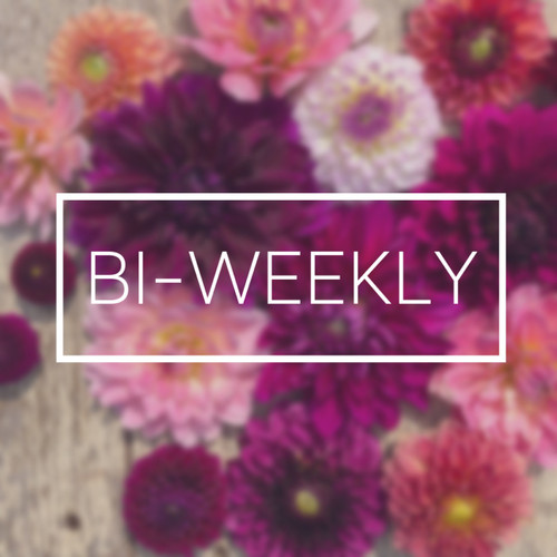 2020 Bi-Weekly Flower Subscription {10 Bouquets}