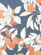 Orangery - Emily Burningham Gift Wrap