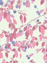 Damsons - Emily Burningham Gift Wrap