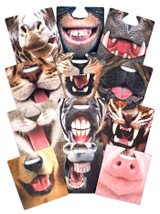 Pack of 12 double sided Facemats