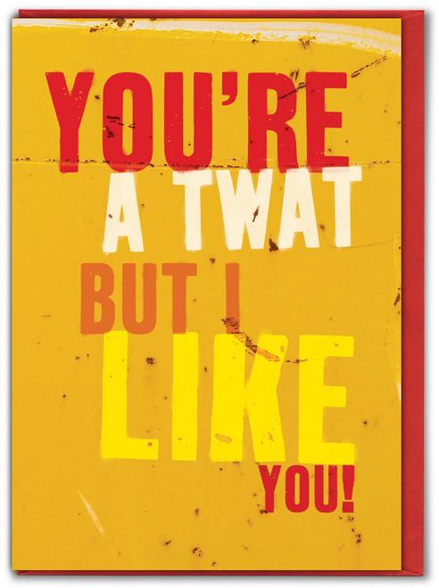 Twat But I Like You! Birthday Card