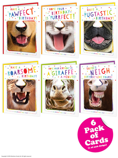 6 Pack Of Mixed Animal Facematt Birthday Cards Each With Wearable Face Mat