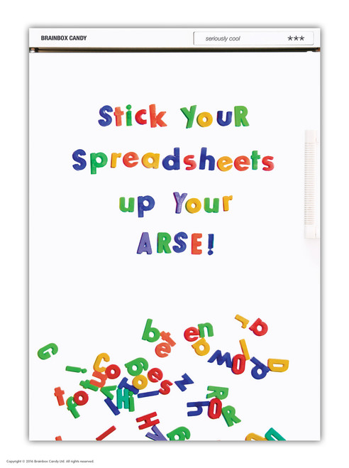 Spreadsheets A6 Notebook
