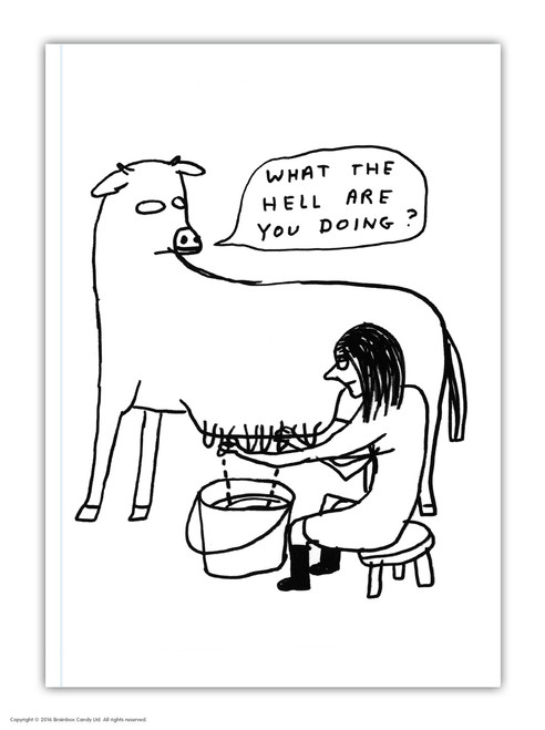 David Shrigley What The Hell A6 Notebook / Notepad