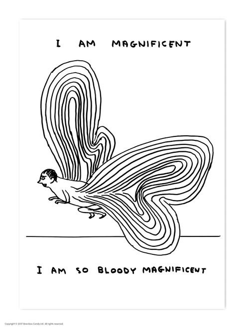David Shrigley I Am Magnificent Postcard