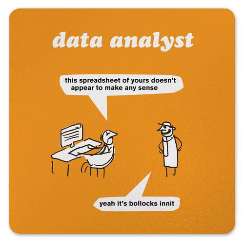 Data Analyst Coaster