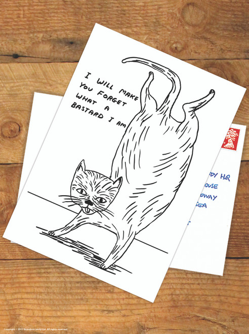 David Shrigley Bastard Cat Postcard